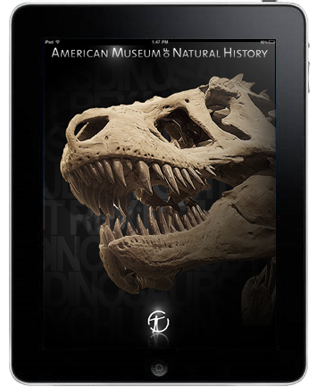 Audio guides for iPad - introduction to museum
